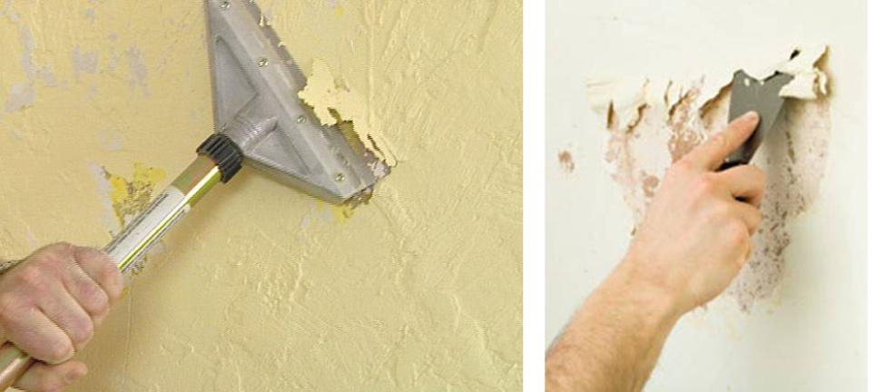 Tư vấn chọn màu sơn nhà đẹp