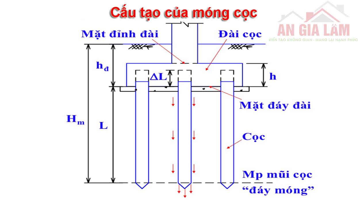 sơ đồ cấu tạo của móng