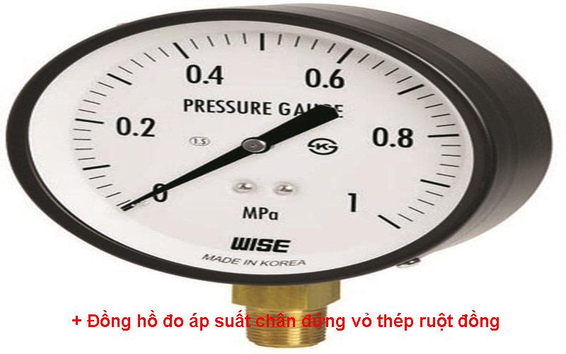 Đồng hồ đo áp suất chân đứng vỏ thép ruột đồng