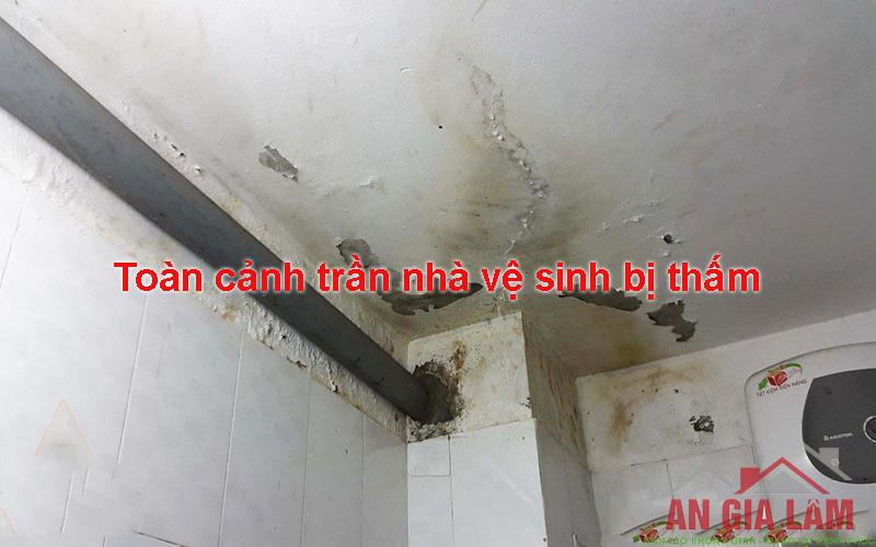 hướng dẫn chống thấm nhà vệ sinh